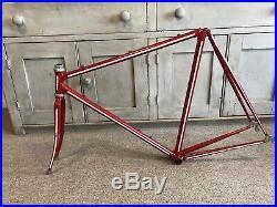 Vintage Steel Low-Profile Road Racing Bike Frame Shimano Campagnolo Reynolds 531